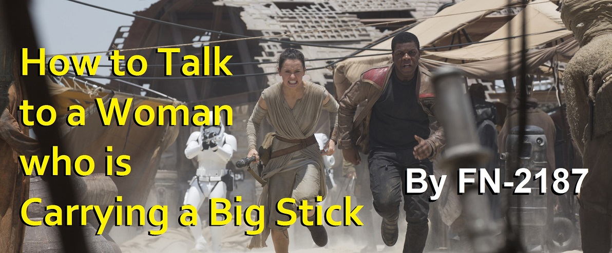 How to Talk to a Woman who is Carrying a Big Stick, by FN-2187